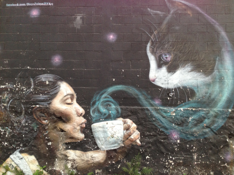 Example of street art: woman and cup o' cat
